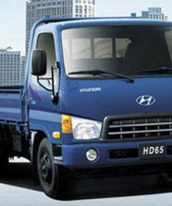 Xe Tải Hyundai 1T75